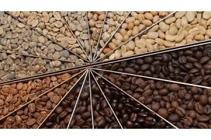 Кофейная алхимия: что происходит во время обжарки