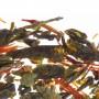 Чай зелёный листовой Althaus Caribbean Zest 200г