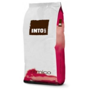 Кофе в зернах INTO Caffe RITMICO 1кг