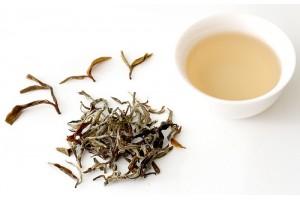 Что такое белый чай?