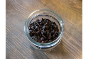 Гешир и каскара. Как приготовить кофейный чай