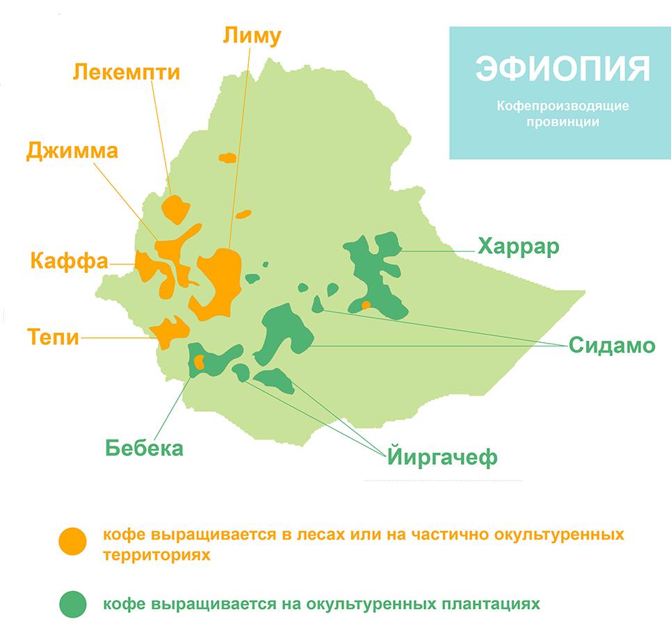 Кофейные регионы Эфиопии, карта: Иргачиф, Сидамо, Джимма, Харрар